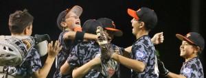 Baseballmain-cvt-070813rh