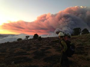 Photo courtesy of Sierra Front Wildfire Cooperators The Boise Hot Shots fight the Bison Fire