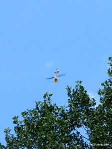 Fire6-cvt-072413cockmah