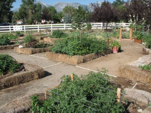 The public gardening beds at Heritage Park Gardens.