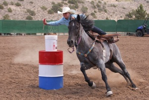 JuniorRodeo2-cvt-072713tems