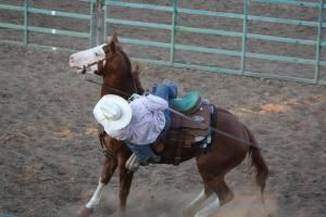 Rodeo3-cvt-072013