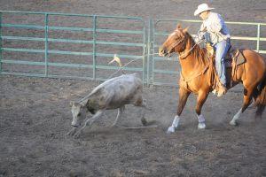 RodeoMain-cvt-072013