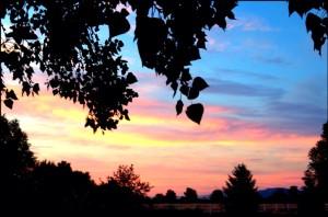 Photo by Cassandra Jones, taken near Heritage Park Monday evening.