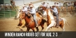 Rodeo-carsonvalleytimes-061114