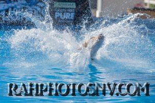 SplashDogs-carsonvalleytimes-072514RonHarpin11