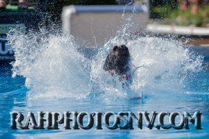 SplashDogs-carsonvalleytimes-072514RonHarpin6