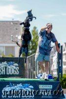 splashdogs-carsonvalleytimes-072614RonHarpin20