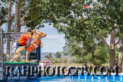 SplashDogs1-carsonvalleytimes-072614RonHarpin-7