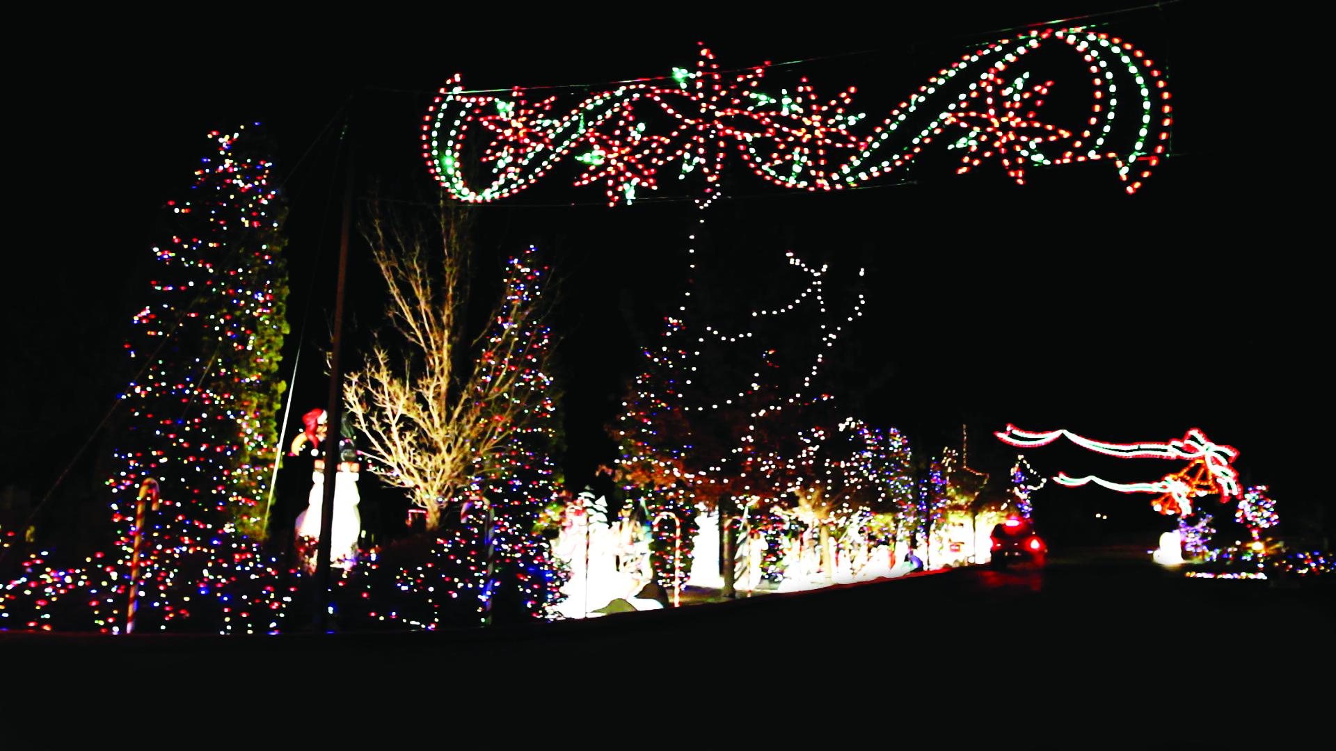 Candy Cane Outdoor Christmas Decorations Candycanelane