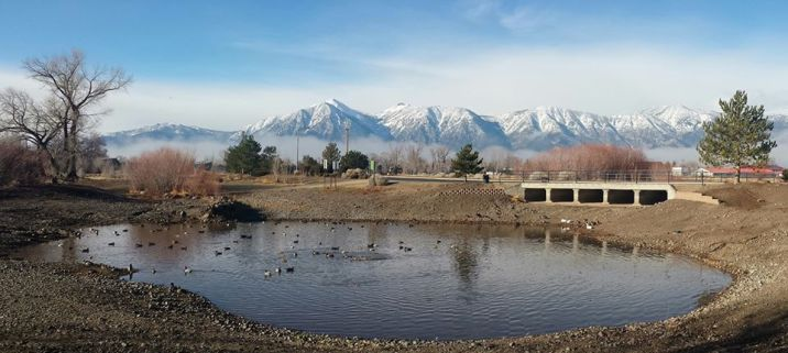 Photo by Chris Dickerson, real water in the Martin Slough fishing ponds